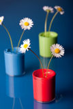 Flower Pot with paint Stock Photography