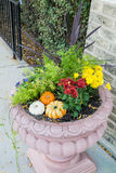 Flower pot and pumpkin Royalty Free Stock Photo