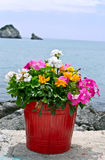 Flower pot with sea Stock Photography