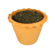 Flower pot with soil Stock Image