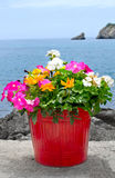 Flower Pot on Stone Wall with sea and boat in backgroundr rock formation sea landscape Stock Image