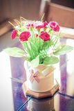 Flower pot on table Stock Image