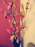 Flower pot stock photography