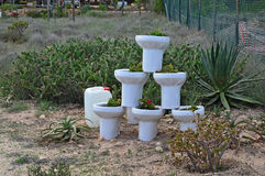 Flower Pot Toilets Stock Photography