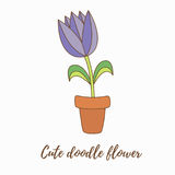 Flower in pot vector illustration Stock Photos