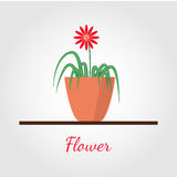 Flower in the pot vector illustration. Houseplant standing on table vector icon. Illustration in flat design, isolated on modern stylish color background stock illustration