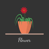 Flower in the pot vector illustration. Houseplant standing on table vector icon. Illustration in flat design, isolated on modern stylish color background Stock Photography