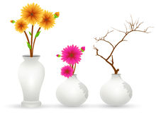 Flower Pot Vectors Stock Photo