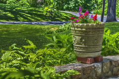 Flower Pot Veranda HDR Royalty Free Stock Images