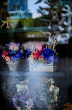Flower in pot vintage style, holiday and wedding floral decorati Stock Image