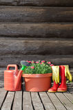 Flower pot,watering can and rubber boots Stock Photo