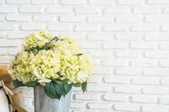 flower in pot with white brick wall background Royalty Free Stock Image