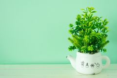 The flower pot on wooden board. Have a less space for copy texture backgrounds stock photo
