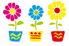 Flower in pots Royalty Free Stock Photos