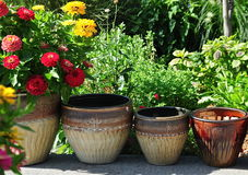 Flower Pots. Ceramic flower pots lined up Royalty Free Stock Image