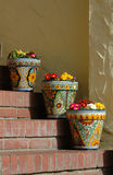 Flower pots Stock Photos