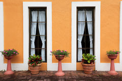Flower pots against symmetric French window Stock Photography