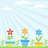 Flower Pots Background Royalty Free Stock Photos