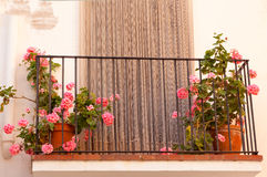 Flower pots on the balcony of house Stock Photos