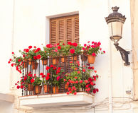 Flower pots on the balcony of  house Stock Photo