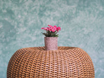 Flower pots. Clay pots are planted pink flowers on a wicker chair in green wall painted background Royalty Free Stock Photo