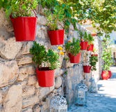 Flower pots Royalty Free Stock Photo