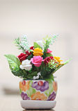 Flower pots with colorful roses. Royalty Free Stock Photography