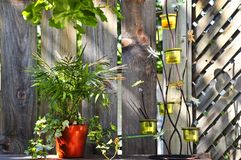 Flower pots and decorations on house deck Royalty Free Stock Images