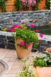 Flower pots in the design of the yard. Flower pots near the artificial pond in the design of the yard stock photo