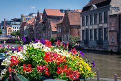 Flower pots at the edge of the canal on a sunny day in Ghent, Belgium, Europe. Nice view of picturesque medieval houses on the royalty free stock photography