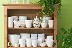 Flower pots. In the florist shop royalty free stock images