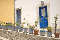 Flower pots in front of two entrances. In Lisbon, Portugal Stock Image