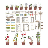 Flower pots with herbs and vegetables.  Plants Stock Images