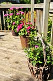 Flower pots on house deck. Wooden house deck decorated with flower pots Royalty Free Stock Images