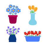 Flower pots icons. Spring flowers in pots and vases set Stock Image