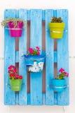 Flower pots, Kos, Greece. Stock Photo