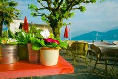 Flower pots in outdoor restaurant Stock Image