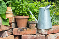 Flower pots Royalty Free Stock Images