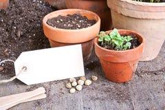 Gardening Royalty Free Stock Images