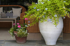 Flower pots in resort patio(Greece) Stock Images