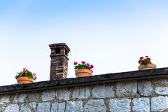 Flower pots on a roof with a chimney in the background Stock Photography