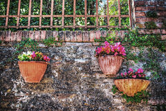 Flower pots in San Gimignano Stock Images