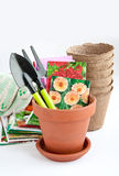 Flower pots and seed in a bags Royalty Free Stock Images