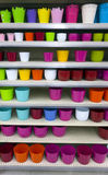 Flower pots on shelves Royalty Free Stock Images