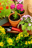 Flower pots and shovel pot in green garden Royalty Free Stock Photography