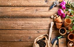 Flower pots and soil with copy space stock image