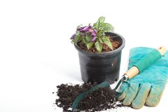 Flower pots with soil are ready for planting or sowing. Pots and gardening tools Stock Photography