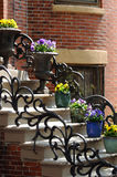 Flower Pots on Steps stock image