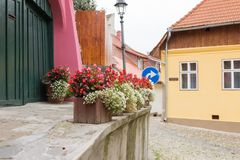 Flower pots on the Street of Carpenters in  the old city of Sighisoara in Romania. Flower pots on the Street of Carpenters in the old city of Sighisoara in Stock Images