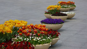 Flower pots on the street Stock Photo